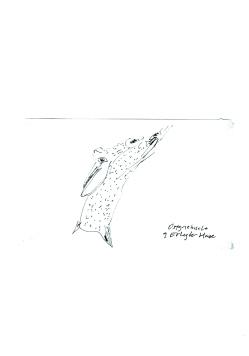 Berlin Sketchbook_Francisco Tomsich, H