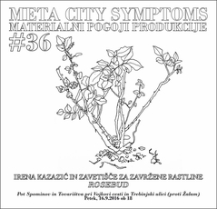 MCS 36 (Copiar)_copiar