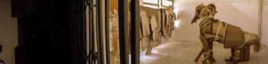 36_the-horse-inside-the-flat-ne-spadamo-na-balkona